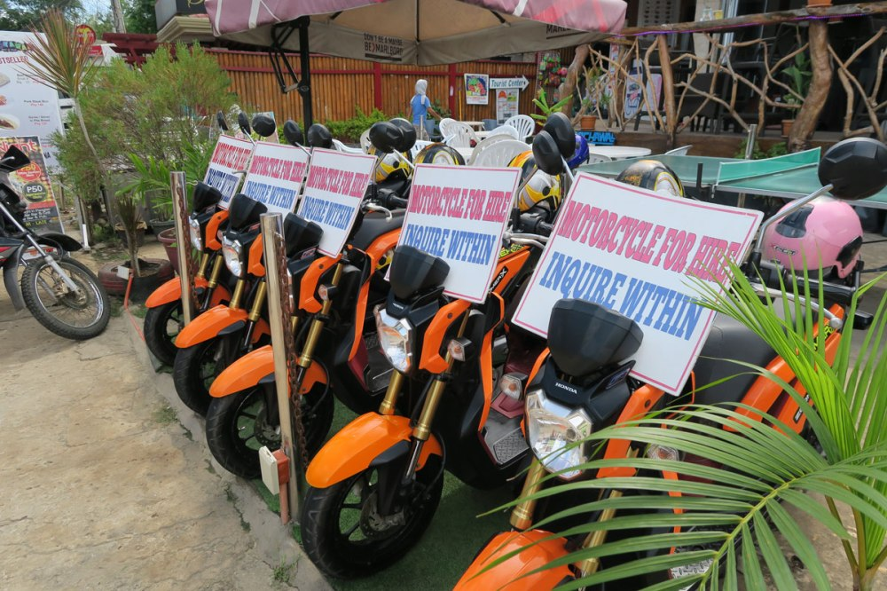Alona beach bike rental